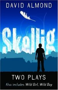 Two Plays - 'Skellig' and 'Wild Girl, Wild Boy'
